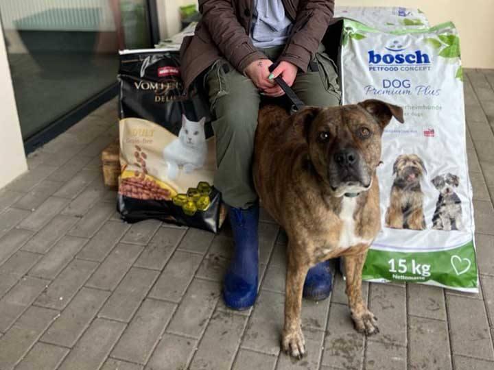 Tierschutzverein Hanau und Umgebung e.V. -Futterspendenankunft-januar-2020-WL-Deutschland (1)