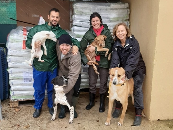 Viva-Animal e.V.-Futterspendenankunft-januar-2020-WL-Spanien (1)