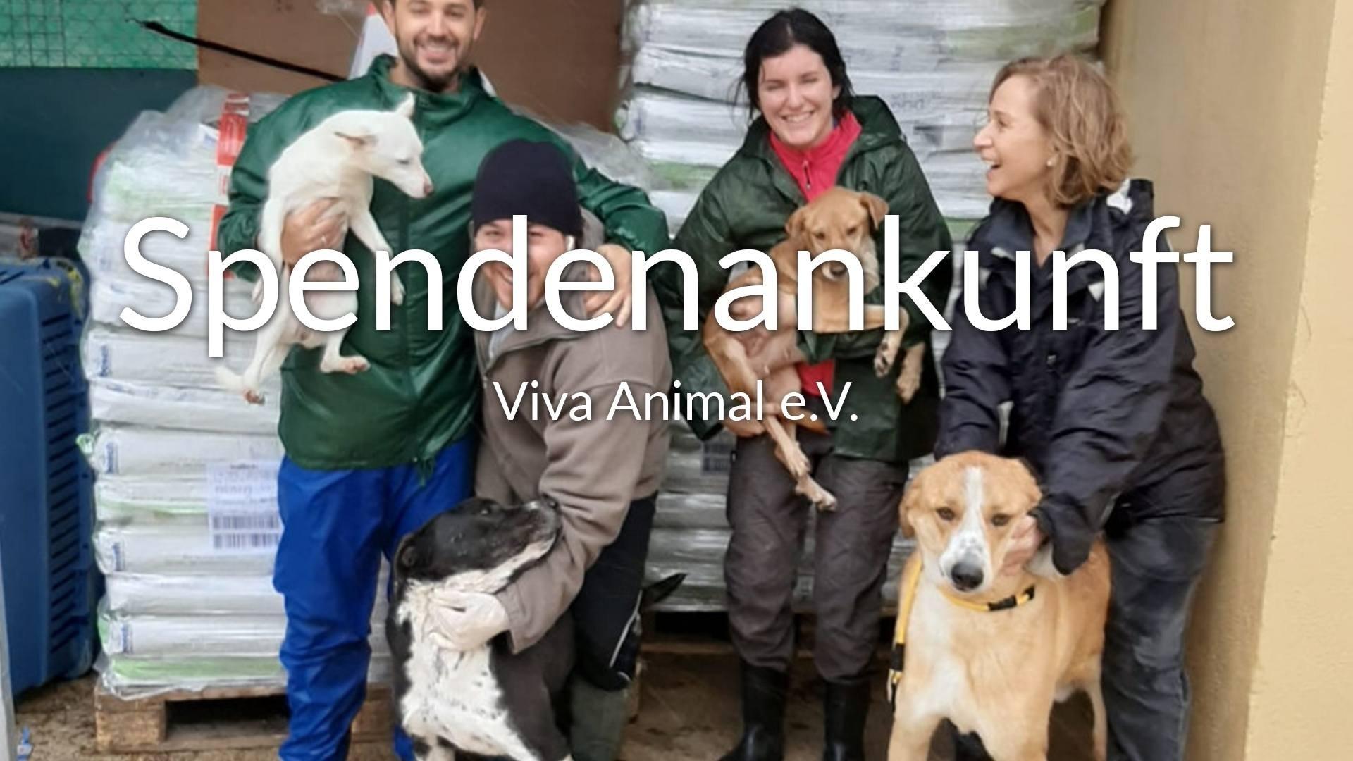 Viva-Animal e.V.-Futterspendenankunft-januar-2020-WL-Spanien-VIDEO