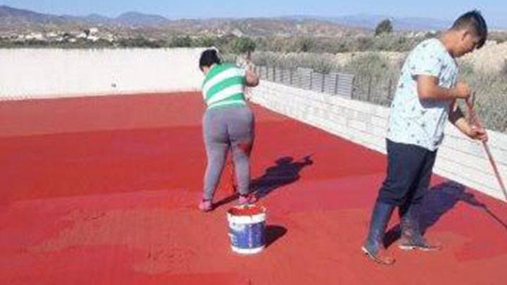 Zwei Tierschützer vom Verein Galgorettung Fränkisches Seenland e.V. streichen das Dach des Tierheims