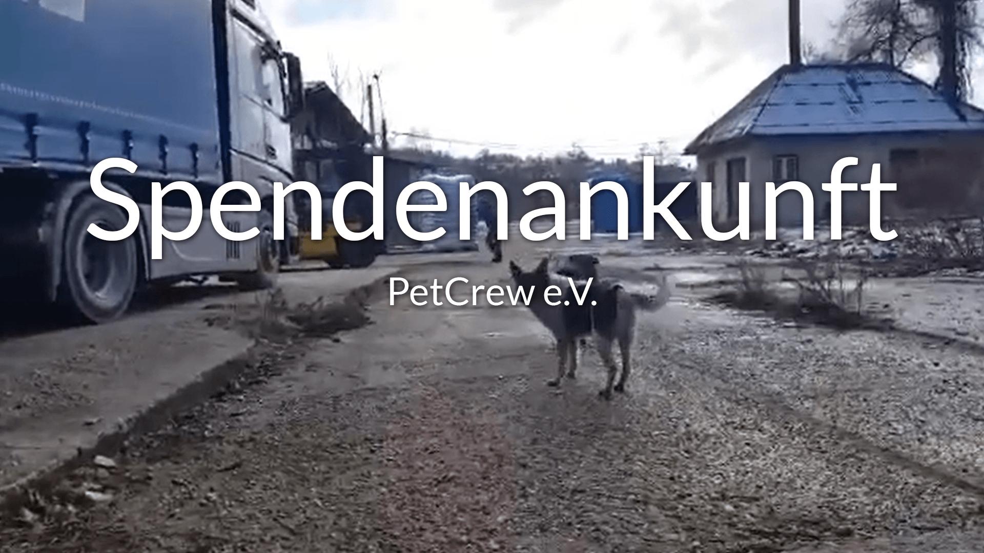 PetCrew_Thumbnail_Video
