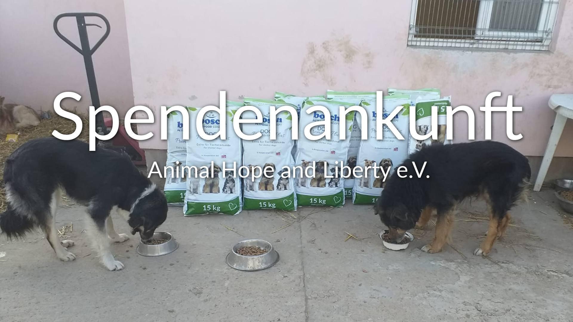 Animal Hope und Liberty eV_Sm2019_Thumbnail