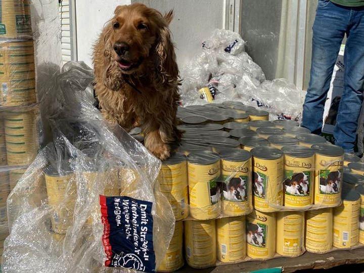 Animal Pard Net e.V.-Futterspendenankunft-maerz-2020-Spenden-Marathon-2019-Griechenland (2)