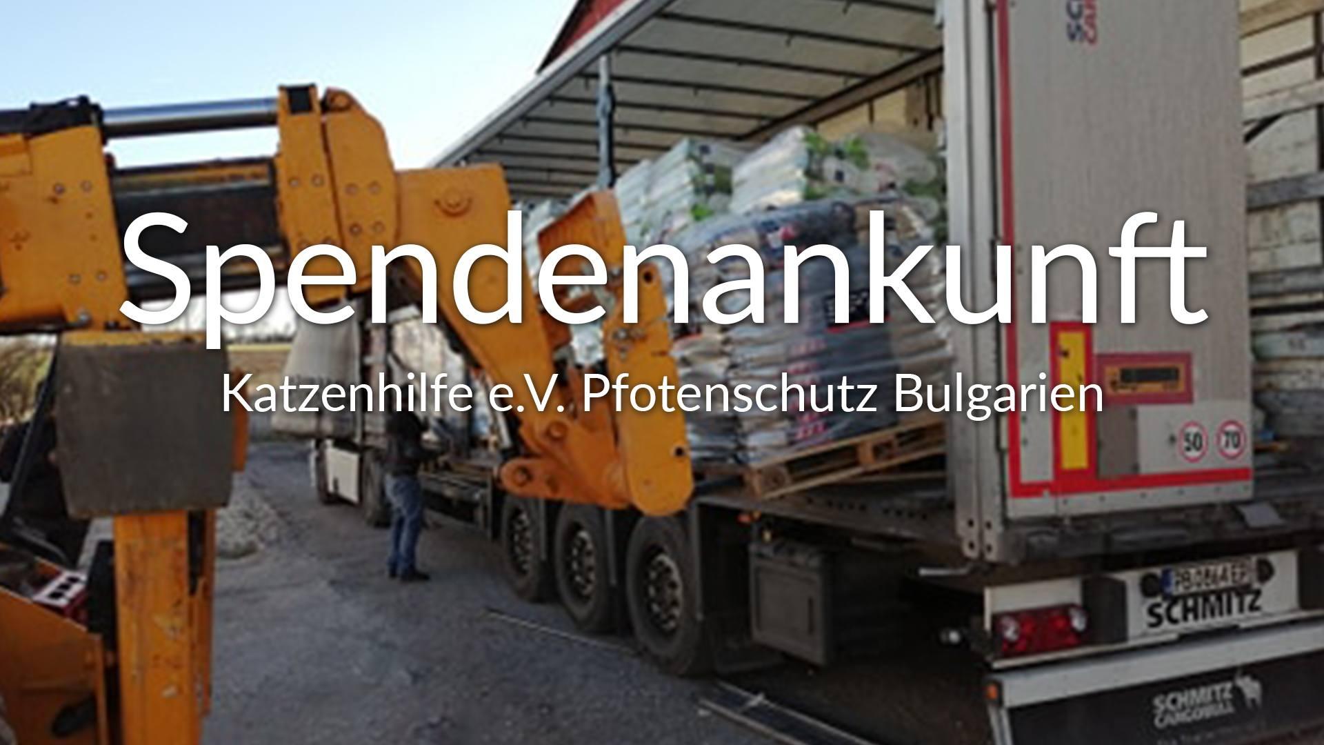 Katzenhilfe e.V. Pfotenschutz Bulgarien SM2019