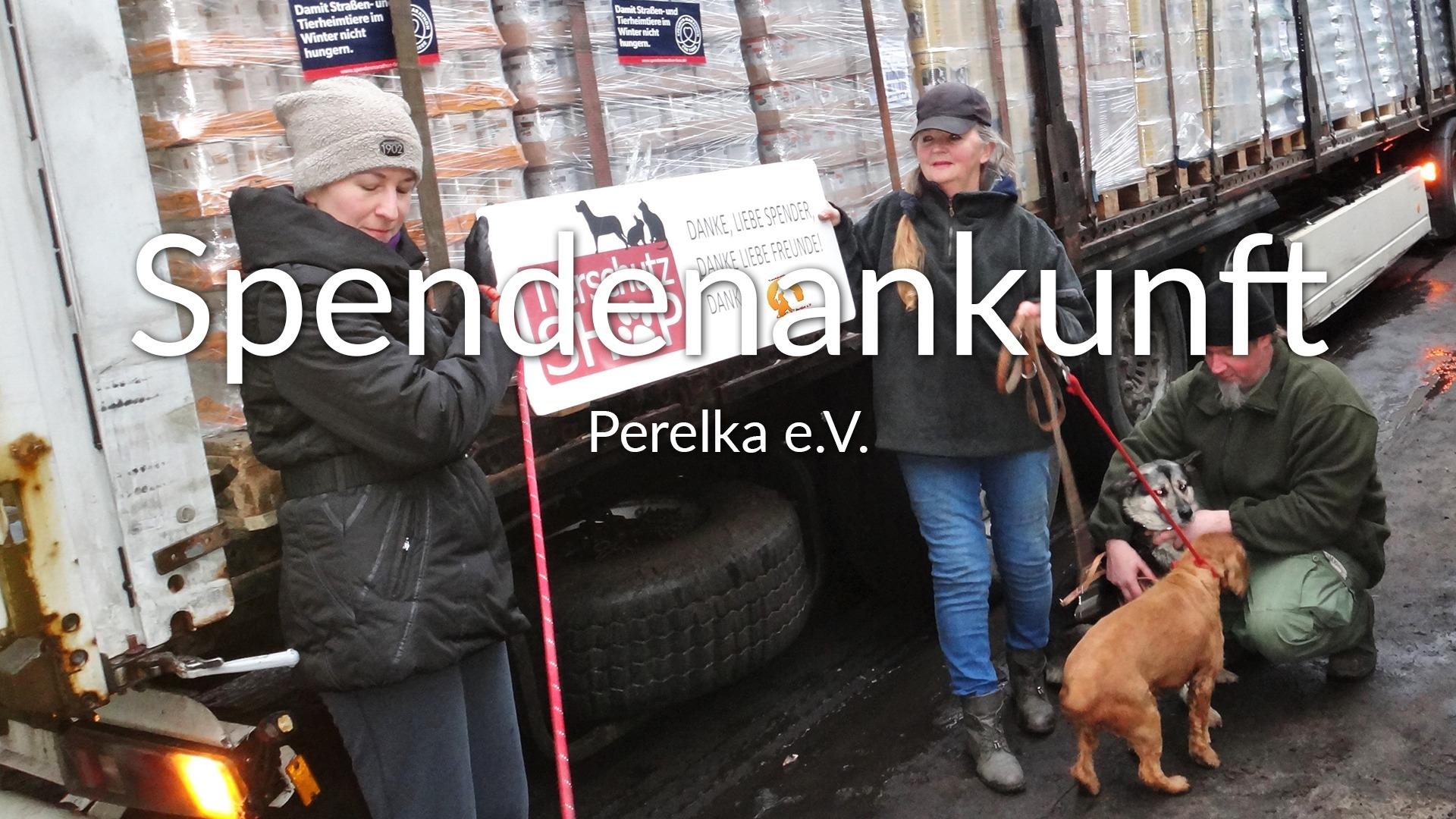 Perelka_eV_SM_2019
