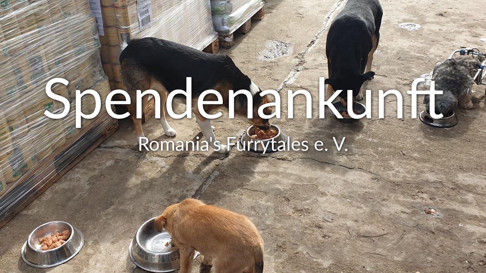 Romania's Furrytales e. V. VIDEO