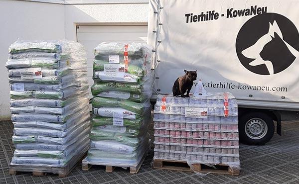 Spendenankunft-Notfallhilfe-Corona-Krise-Tierhilfe-KowaNeu