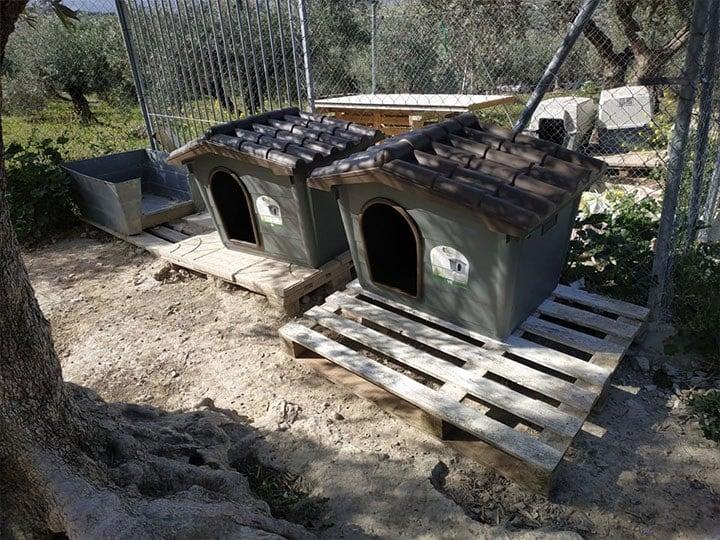pro Hund andaluz e.V.-Futterspendenankunft-maerz-2020-Spenden-Marathon-2019-Spanien(2)