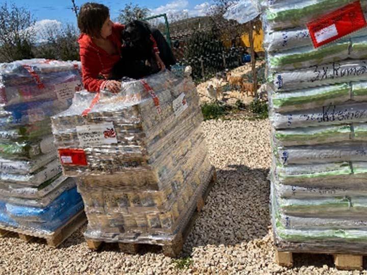 Kleiner Prinz Tierhilfe e.V.-Futterspendenankunft-april-2020-WL-Rumänien (2)
