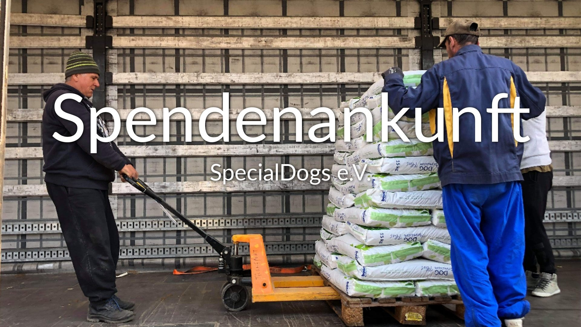 Special_Dogs_SM_2019_VIDEO_thumbnail