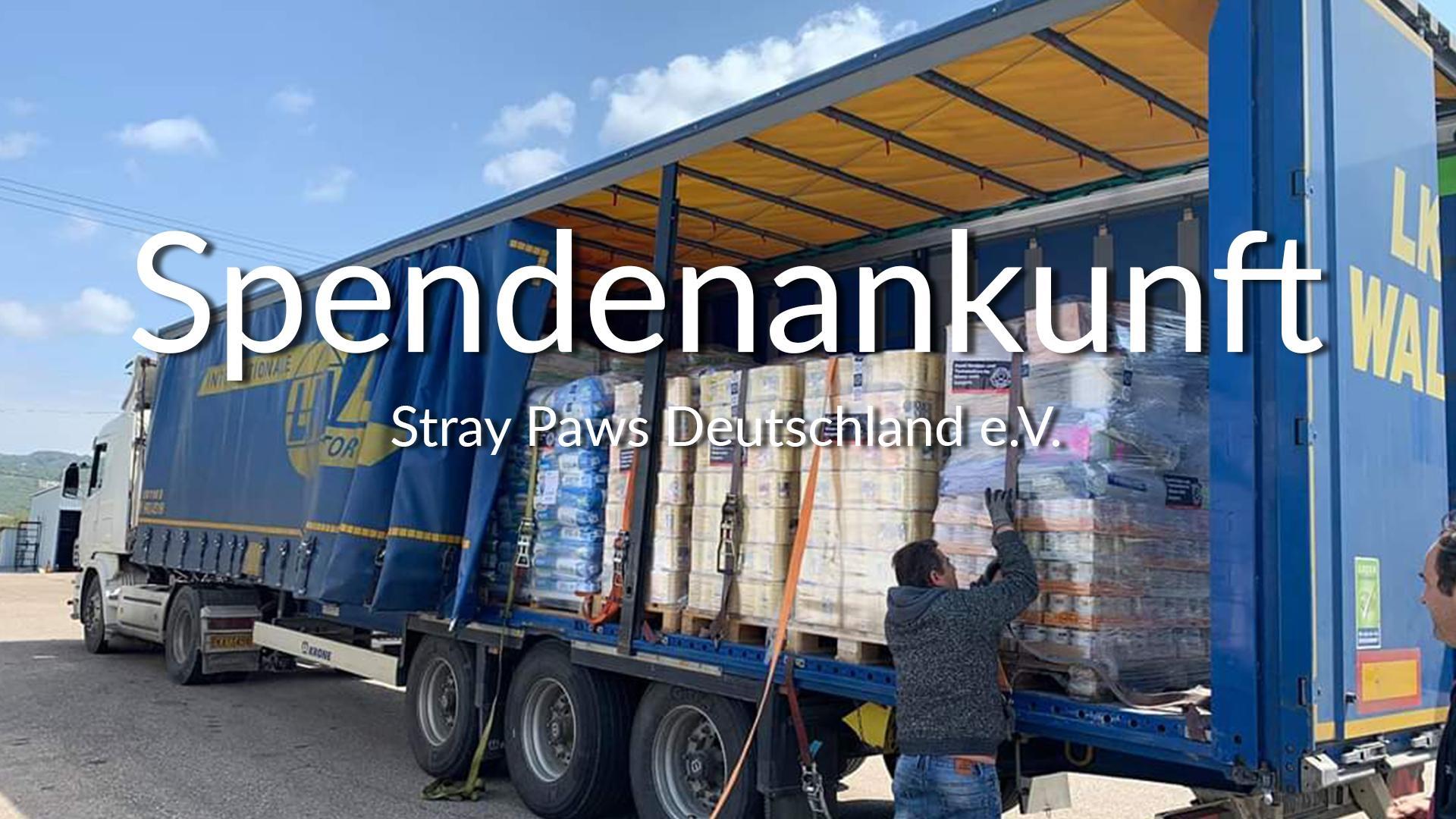 Stray Paws Deutschland e.V_SM2019