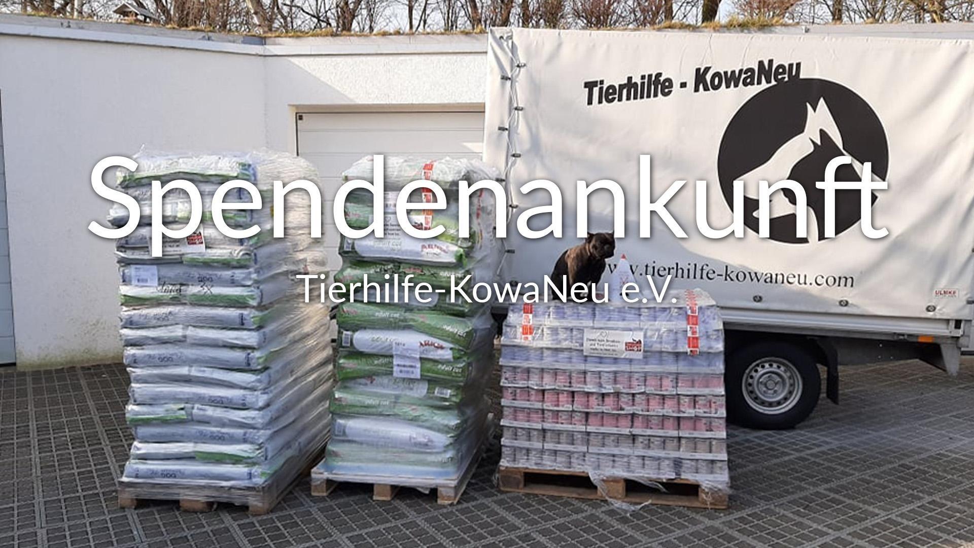 Tierhilfe-KowaNeu_eV_Videos