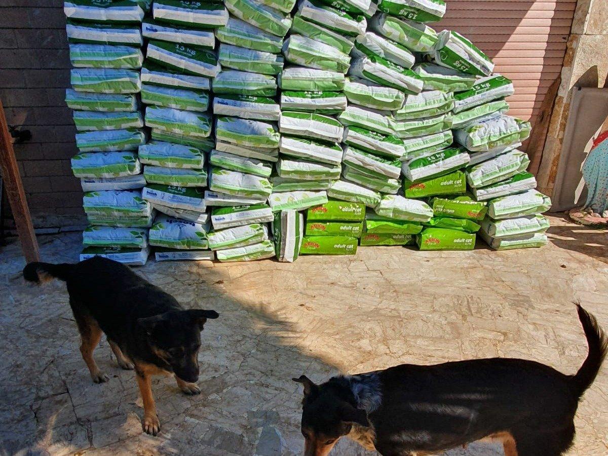 Animal Respect eV_CoronaNotfallhilfe_Italien