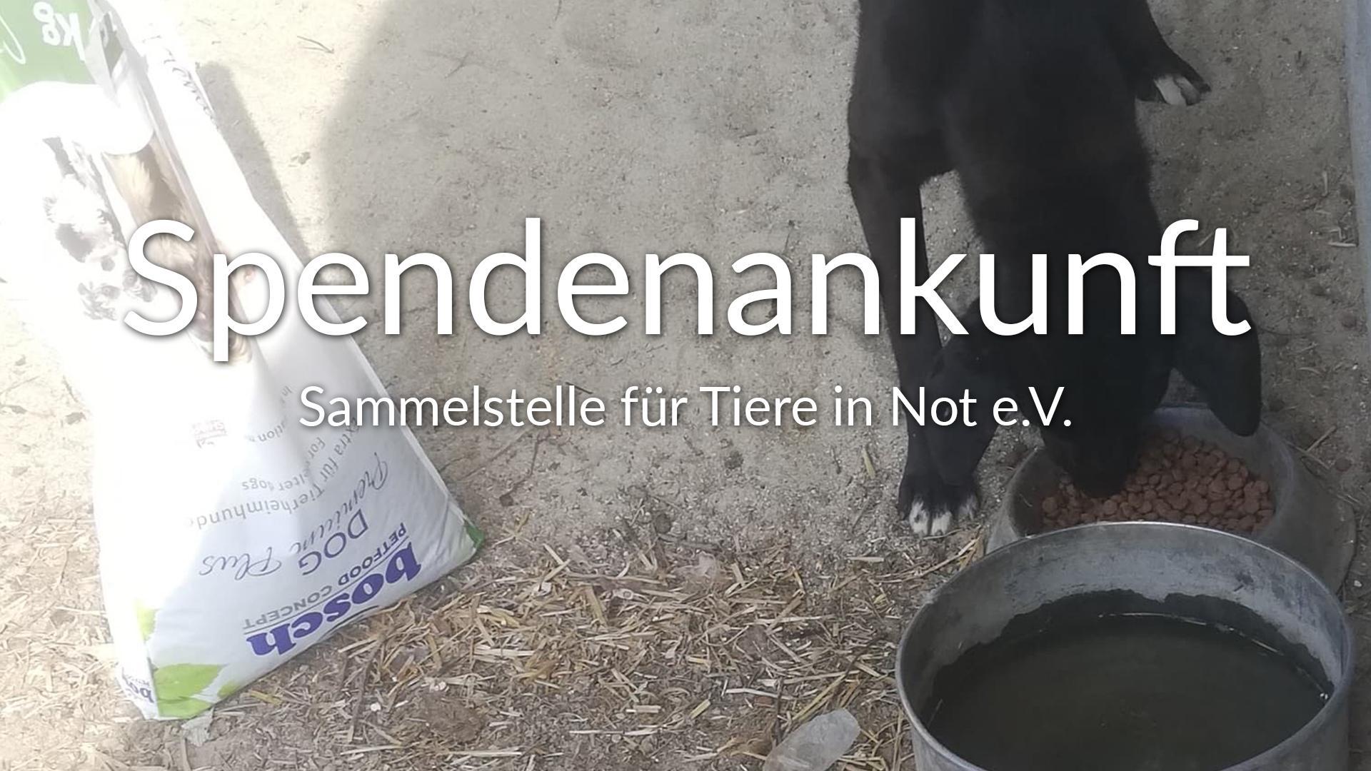 Sammelstelle für Tiere in Not e.V_Corona_Nothilfe