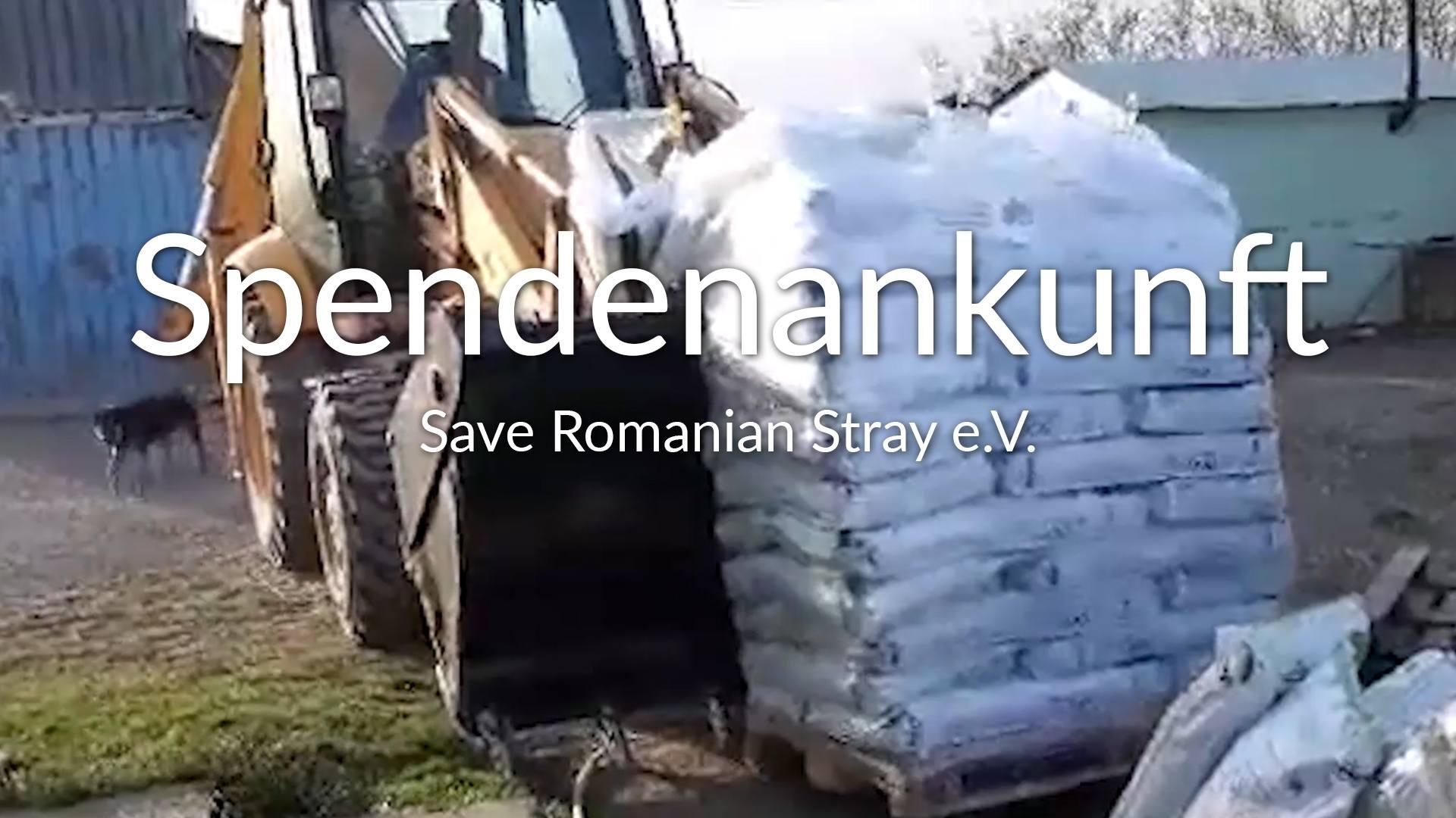 Save Romanian Strays - ROLDA Germany e.V.-Notfallhilfe-Corona-Rumänien-VIDEO