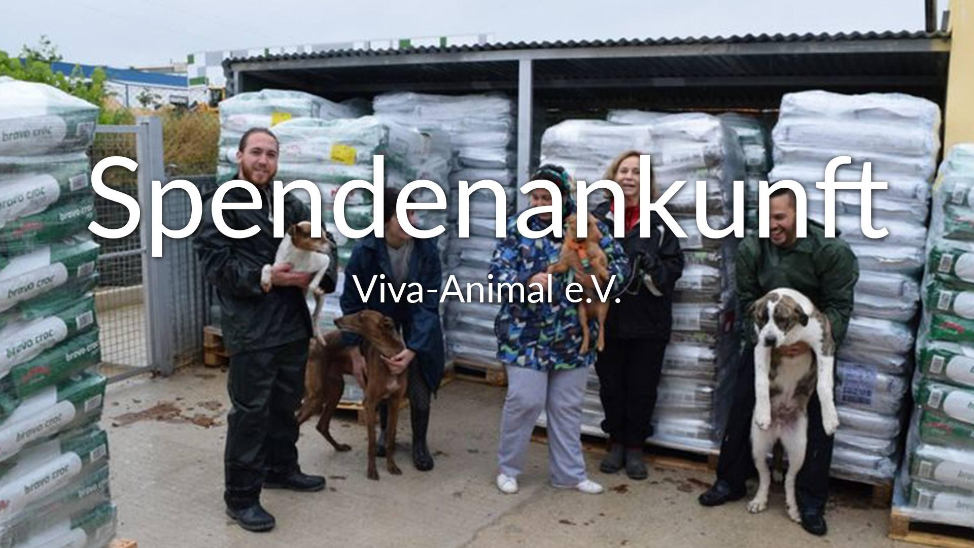 Viva-Animal eV_Galgo Aktion Spanien