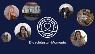 Übersicht der Highlights vom Spenden-Marathon für Tiere 2019