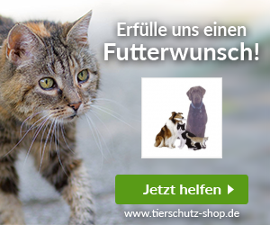 Tierheim Dallau / Tierschutzverein Mosbach u. U. e. V.