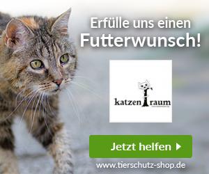 KatzenTRaum e.V.