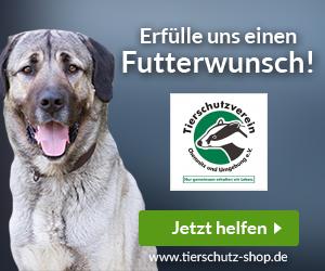 Tierschutzverein Chemnitz und Umgebung e.V.