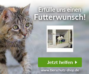 Katzenhilfe Hoyerswerda e.V.