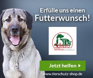 Tierschutz Mölln/ Lbg. u. Umgebung e. V.