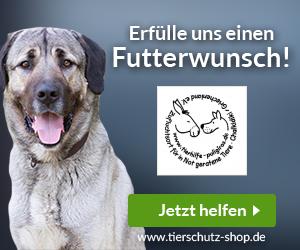 Zufluchtsort für in Not geratene Tiere Chalkidiki/Griechenland e.V.