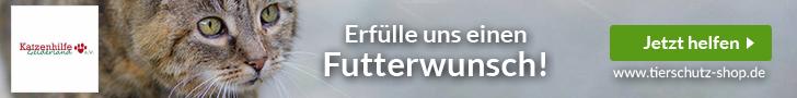 Katzenhilfe Gelderland e.V.